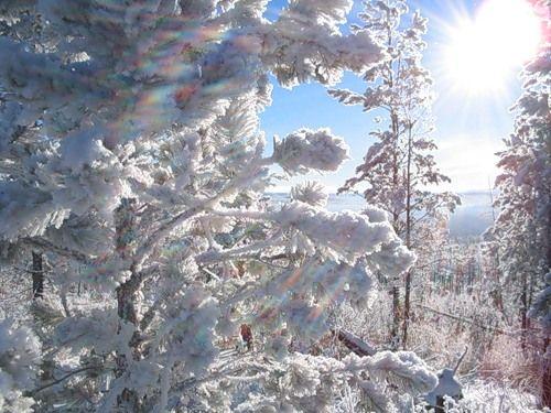 novyj-den-zima-solnce